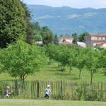 1206-Blog-Visite-Ecole-Beauregard--06