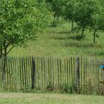 1206-Blog-Visite-Ecole-Beauregard--08