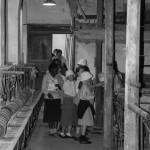 2012-Blog-Visite-Ecole-St-Joseph-26