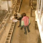 Blog-2007-Atelier-Relevé-03